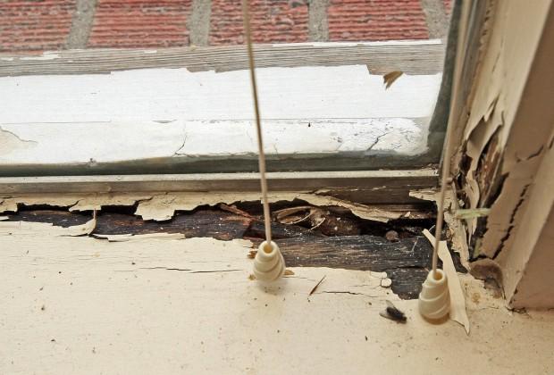 A rotted windowsill