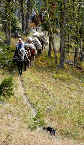 Maggie Carr leads a string of horses