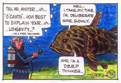 Fish interview
