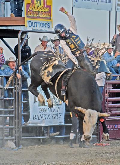 070217-spt-bulls1.jpg