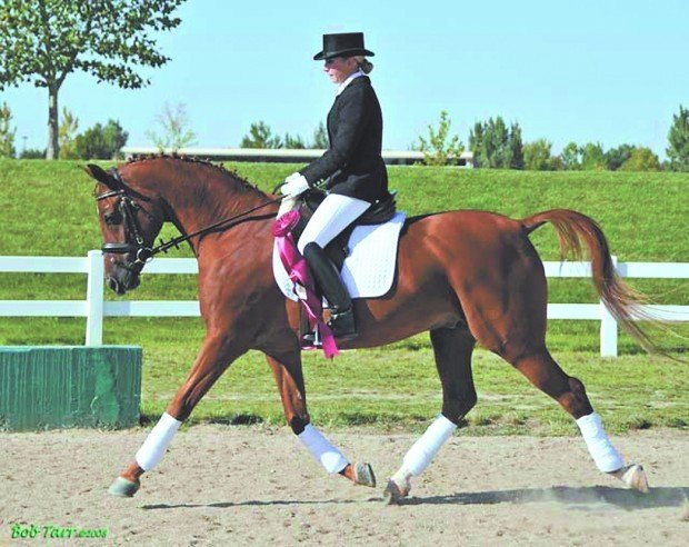 Bismarck having success in riding competitions