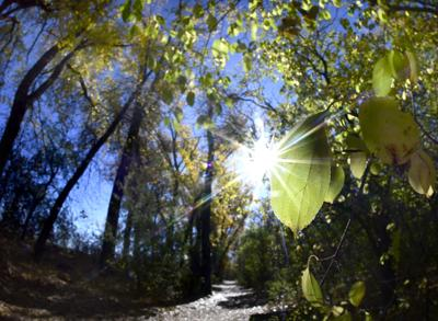 101221-nws-autumn-trail