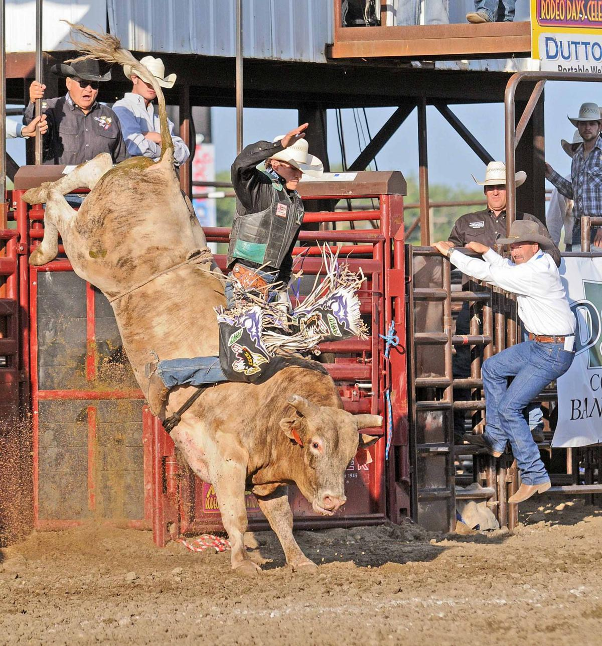 Extreme Bulls Opens Mandan Rodeo Days Tribune Photo