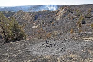 Light rain boosts efforts in Horse Pasture Fire