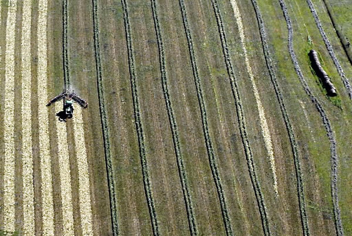 031218-nws-progress-hay-field