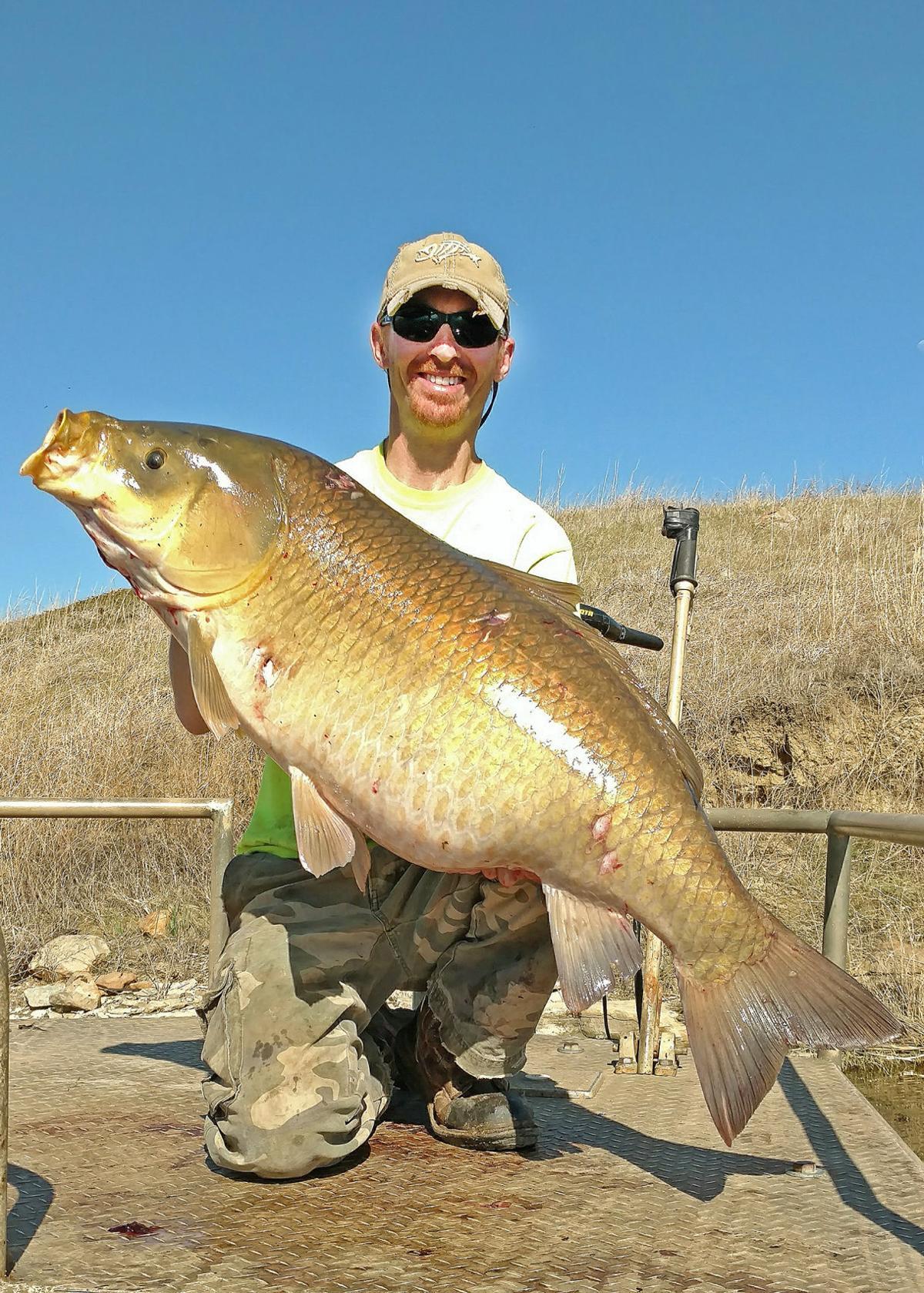 Montana Native Fish: Who's a Sucker?   Sucker Fish