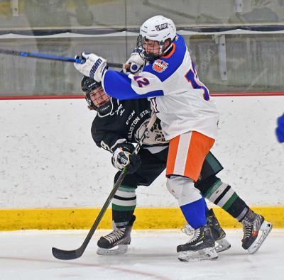 102920-spt-hockey3.jpg