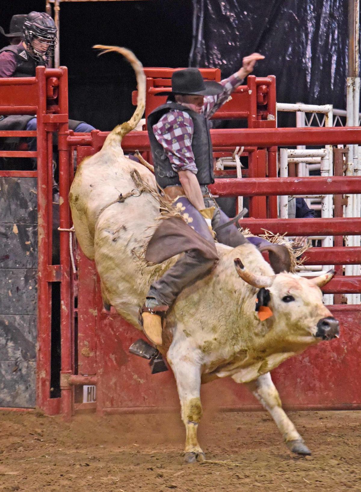 020819-spt-bulls2.jpg