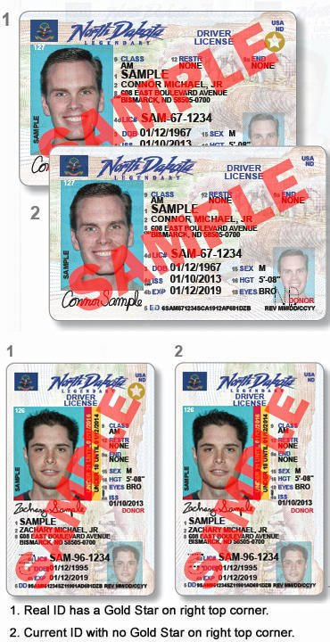 REAL ID driver's license