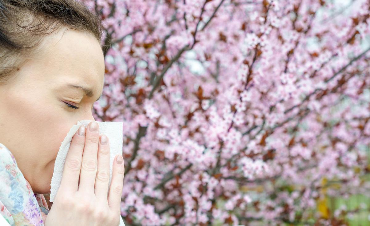 Springtime allergy sufferers, it's time to prepare your