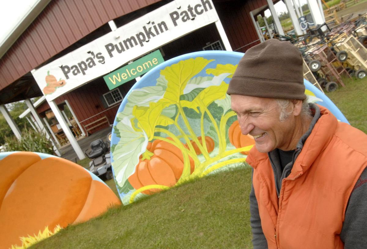9-10 mm pumpkin patch 2