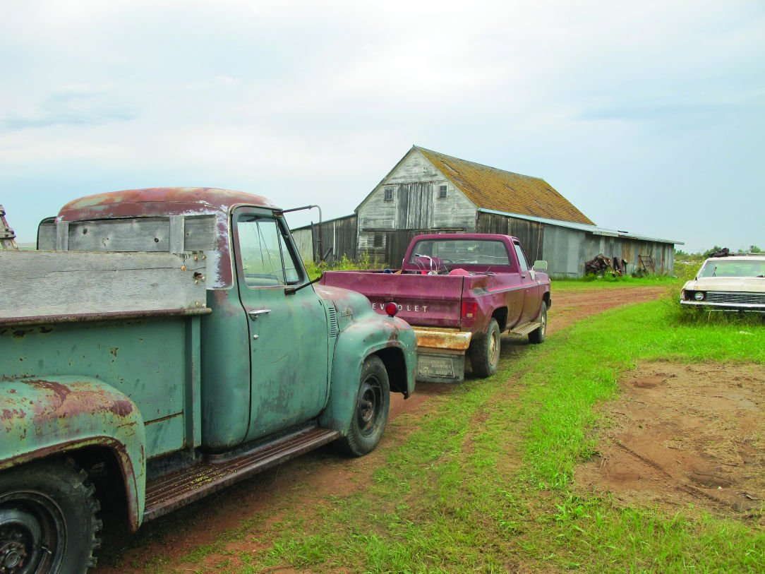 Edsel King' clearing out the lot | North Dakota News