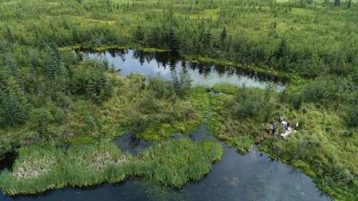 MSU research group travels to Alaska to examine climate trends