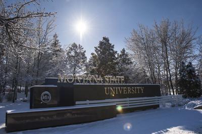 Montana State University wild art