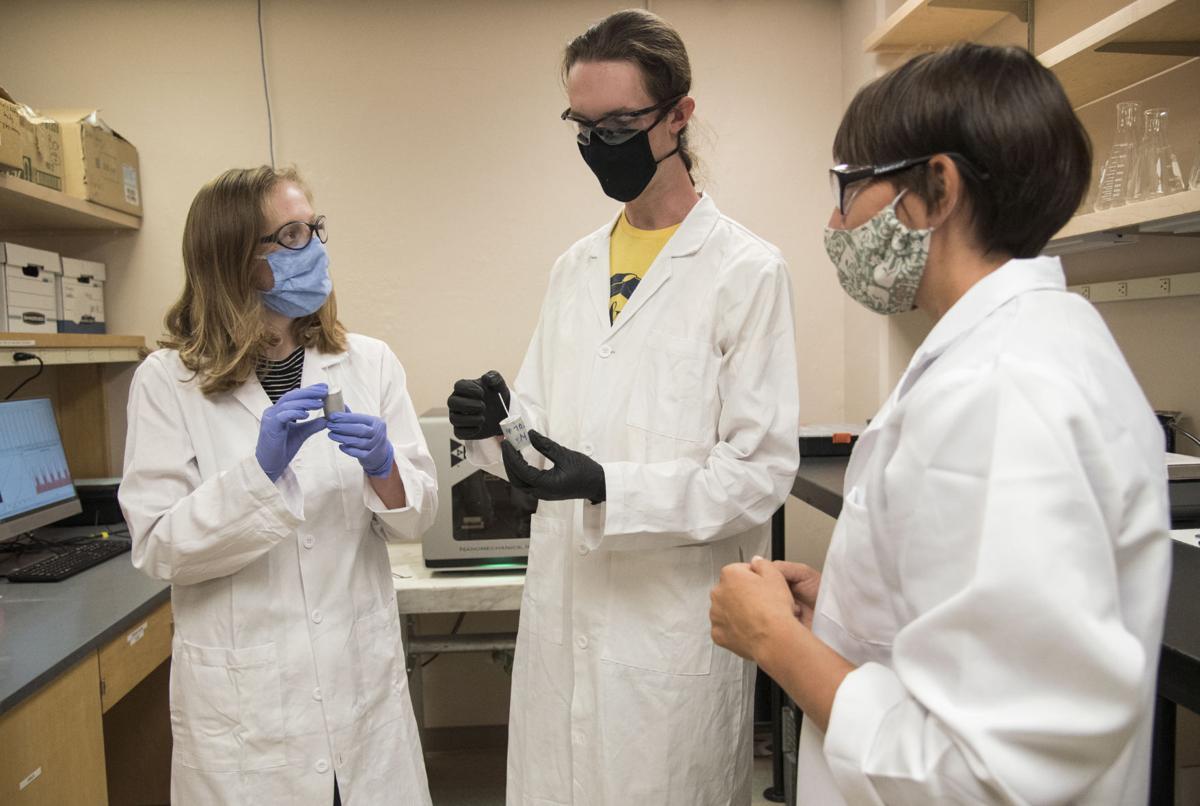 MSU Research Grants