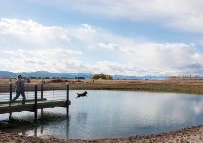 Run Dog Run and the dog parks of Bozeman | For Pet's Sake