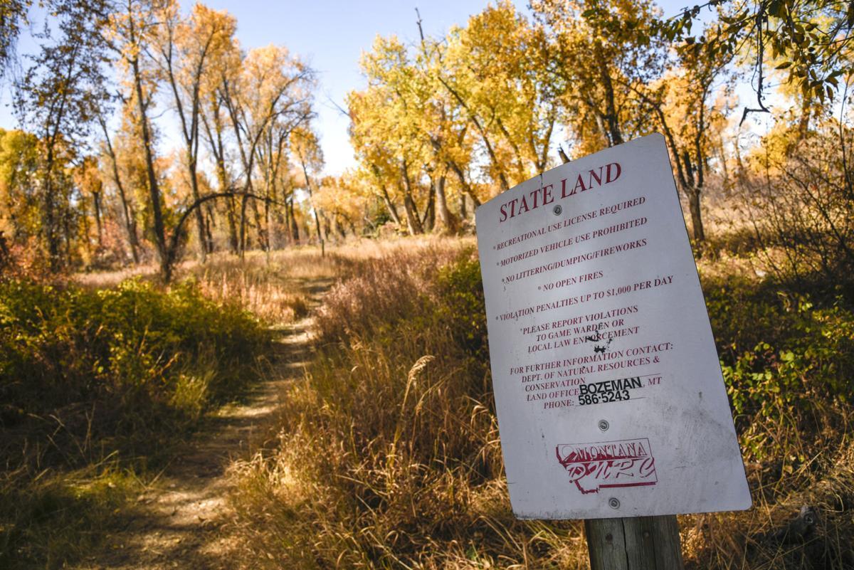 Baker Creek State Land, Land Board