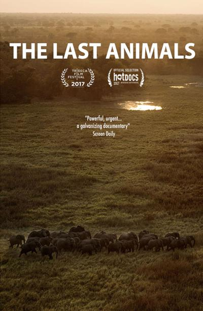 'The Last Animals' poster