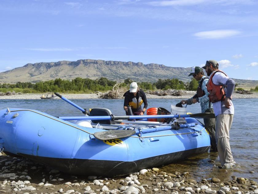 Bass creep: Could smallmouth threaten the Yellowstone River's iconic trout?