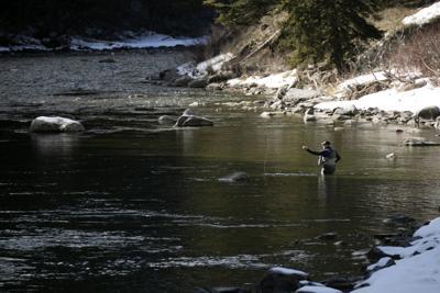 Gallatin River Fly Fishing
