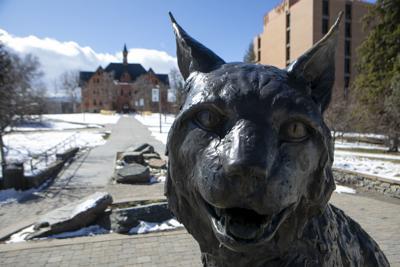 Bobcat Statue - cancelled commencement