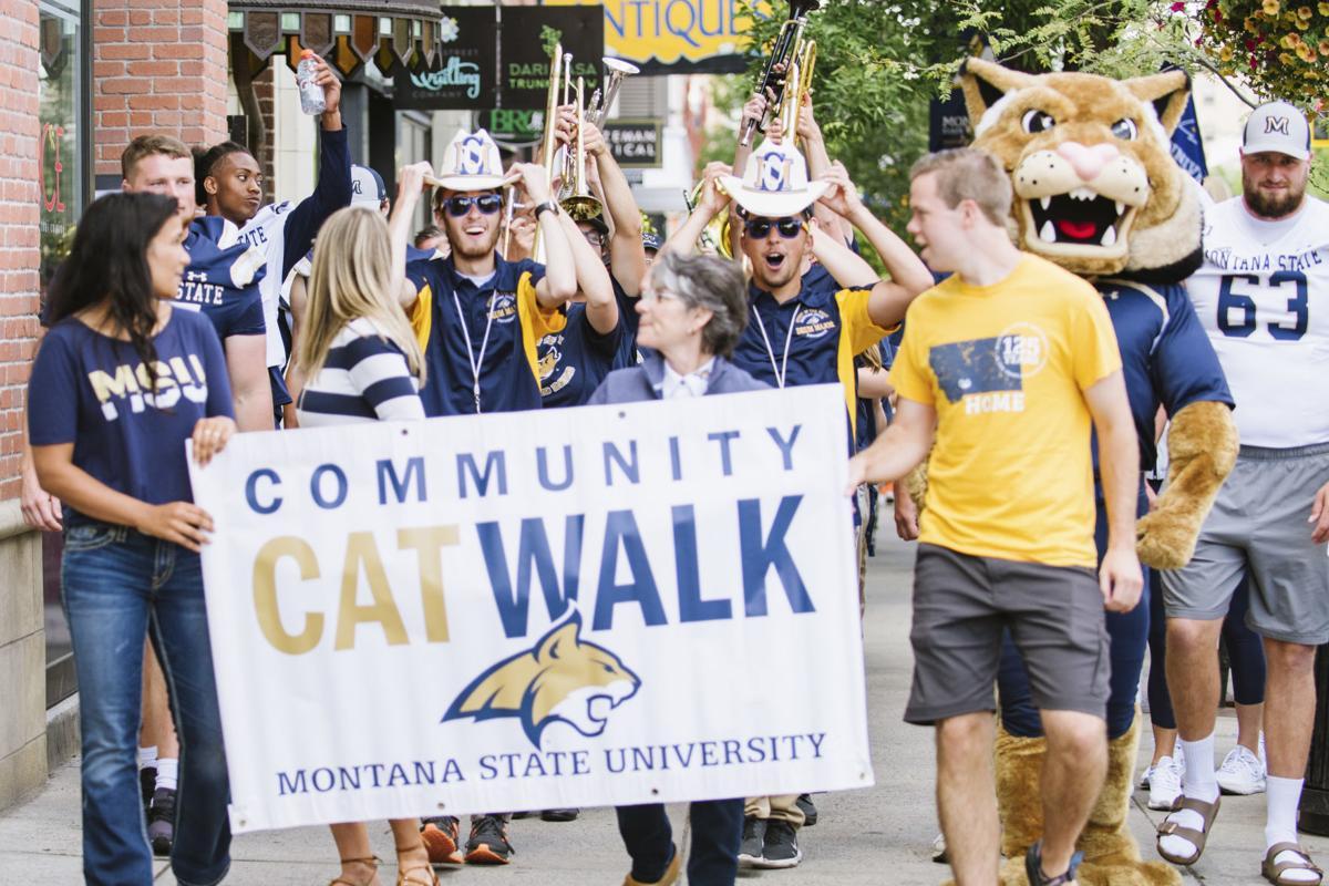 Cat Walk (copy)