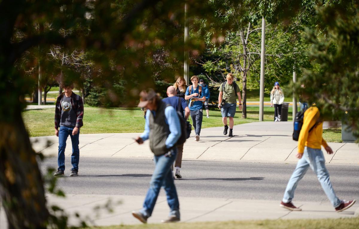 MSU Campus Wild, Masks