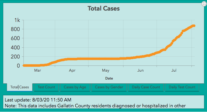 Gallatin County total virus cases to Aug. 3