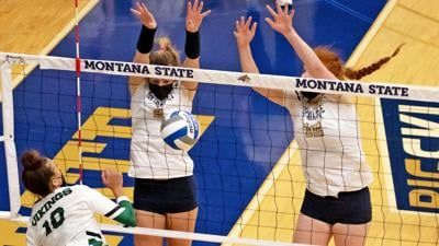 Montana State Bobcats volleyball