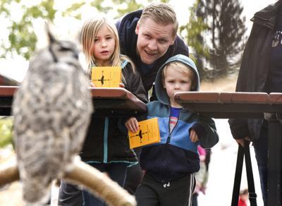 A migration celebration: Bridger Raptor Fest kicks off Friday