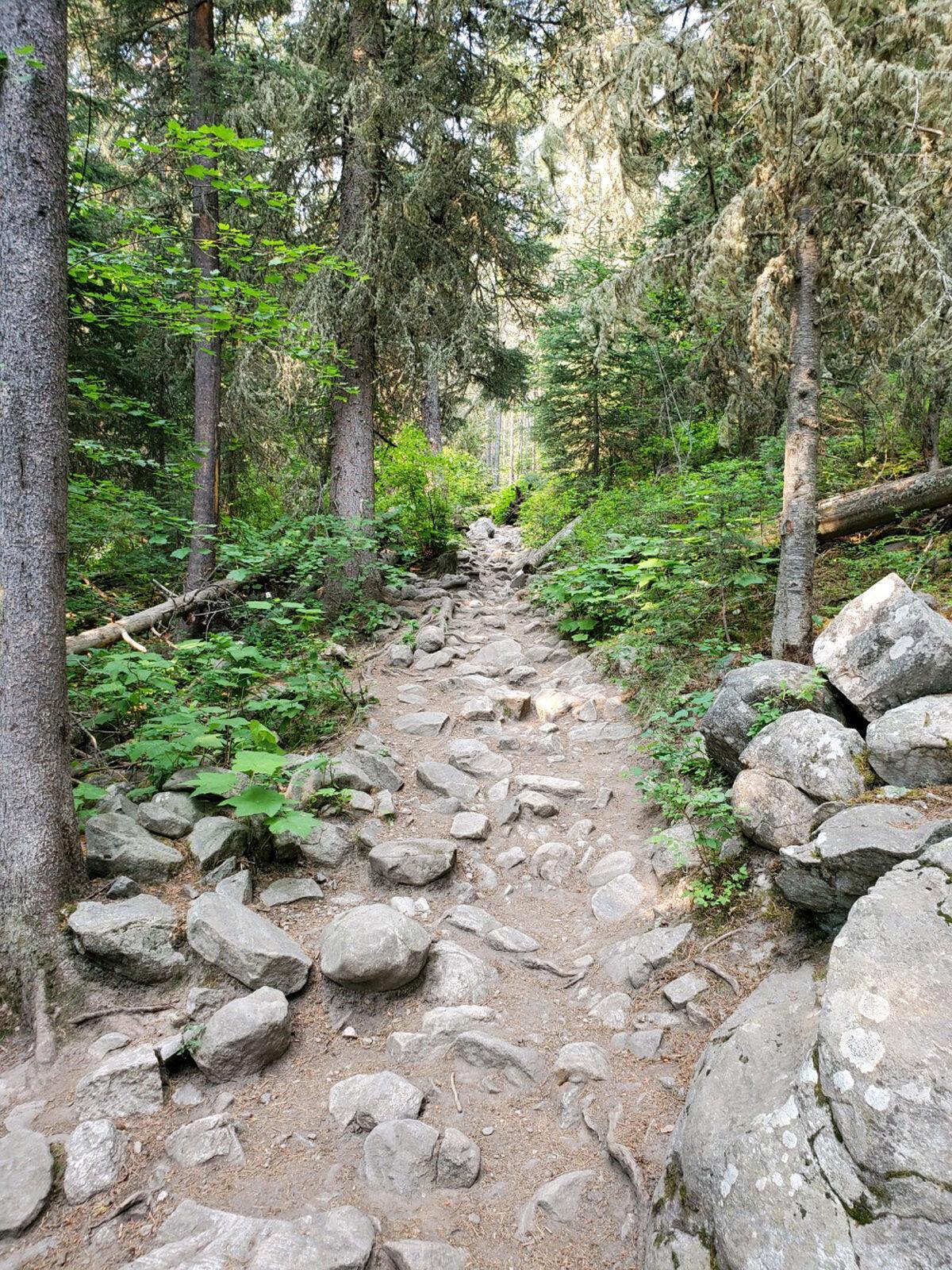 lavalake trail.jpg