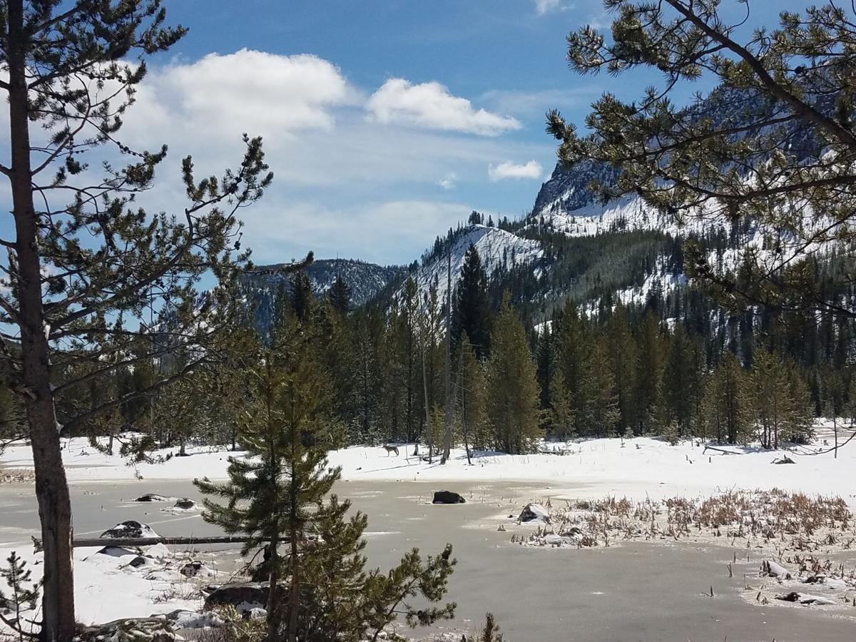 Yellowstone Biking 2