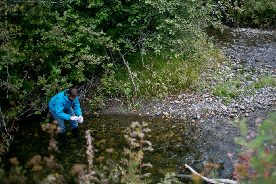 Water monitoring project gets residents involved in local water