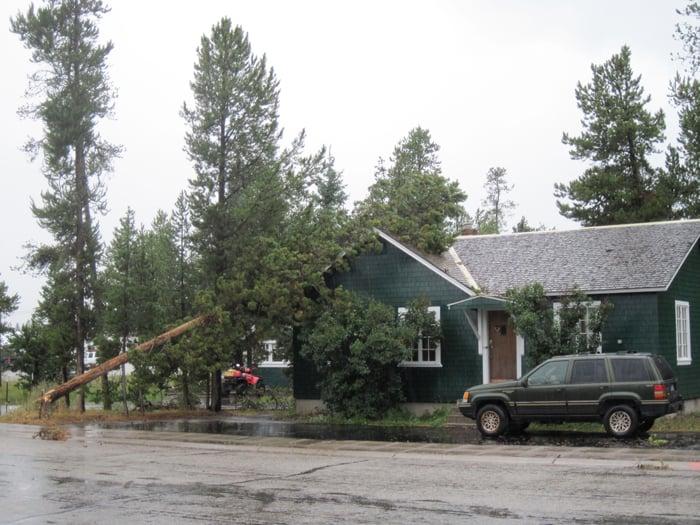 West Yellowstone Wind Storm