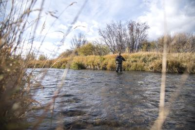 Madison River File