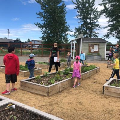 Gallatin Valley Farm to School summer camp