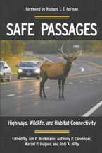 Safe Passages book cover