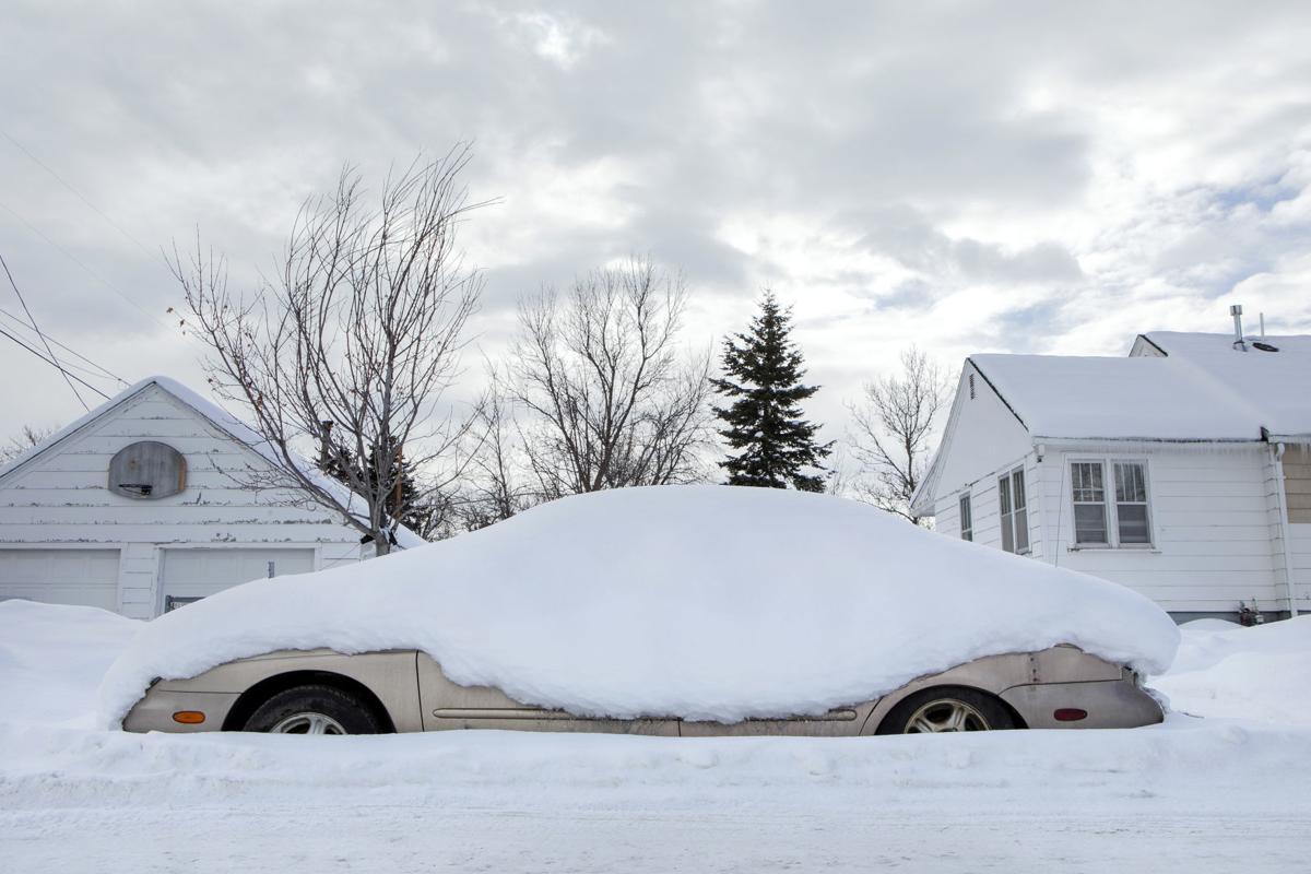 Snow n' squalls