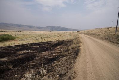 Bradley Creek Fire