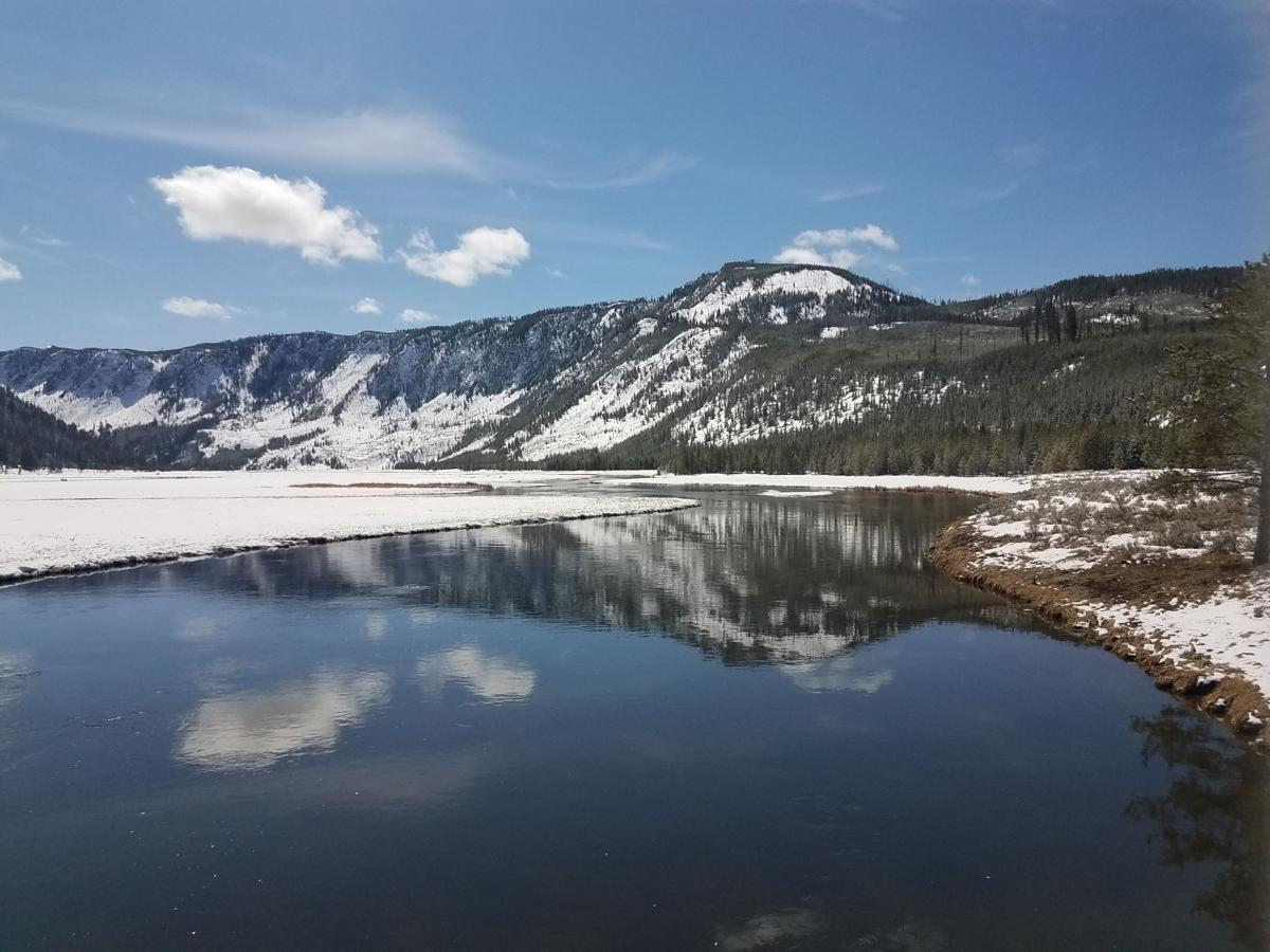 Yellowstone Biking 4