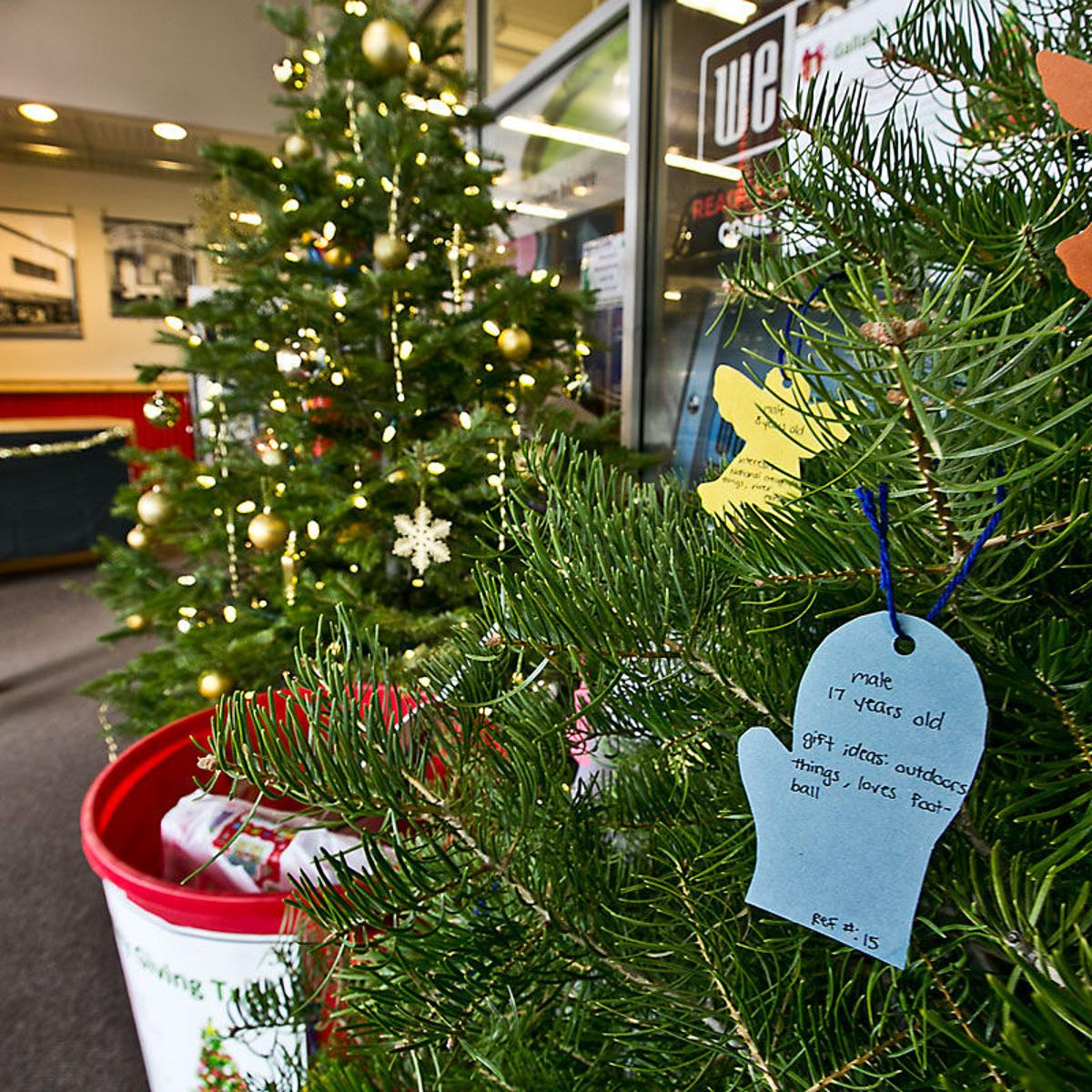 Christmas Giving Tree Ideas.Giving Tree Collecting Gifts For Troubled Youth News