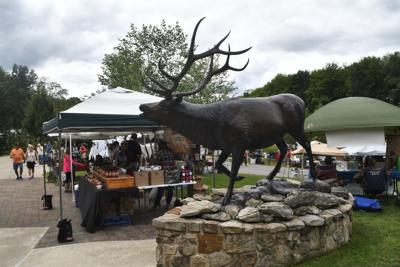 Elk Expo to draw crowds with variety of events | Local | bradfordera com