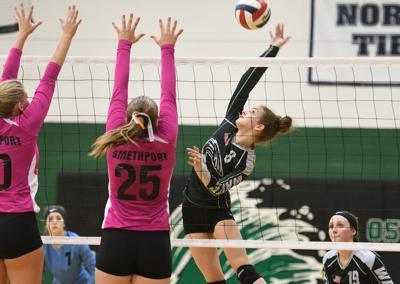 Volleyball: OV stays perfect; Bradford swept in Punxsy
