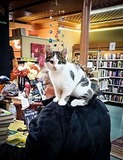 Local bookstore owners awaken Monday to international fame