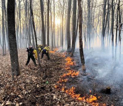 Warren-area wildfire