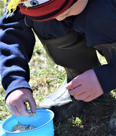 Mentored Youth Trout season opens Saturday