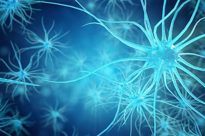 Synapse and Neuron cells sending electrical chemical signals