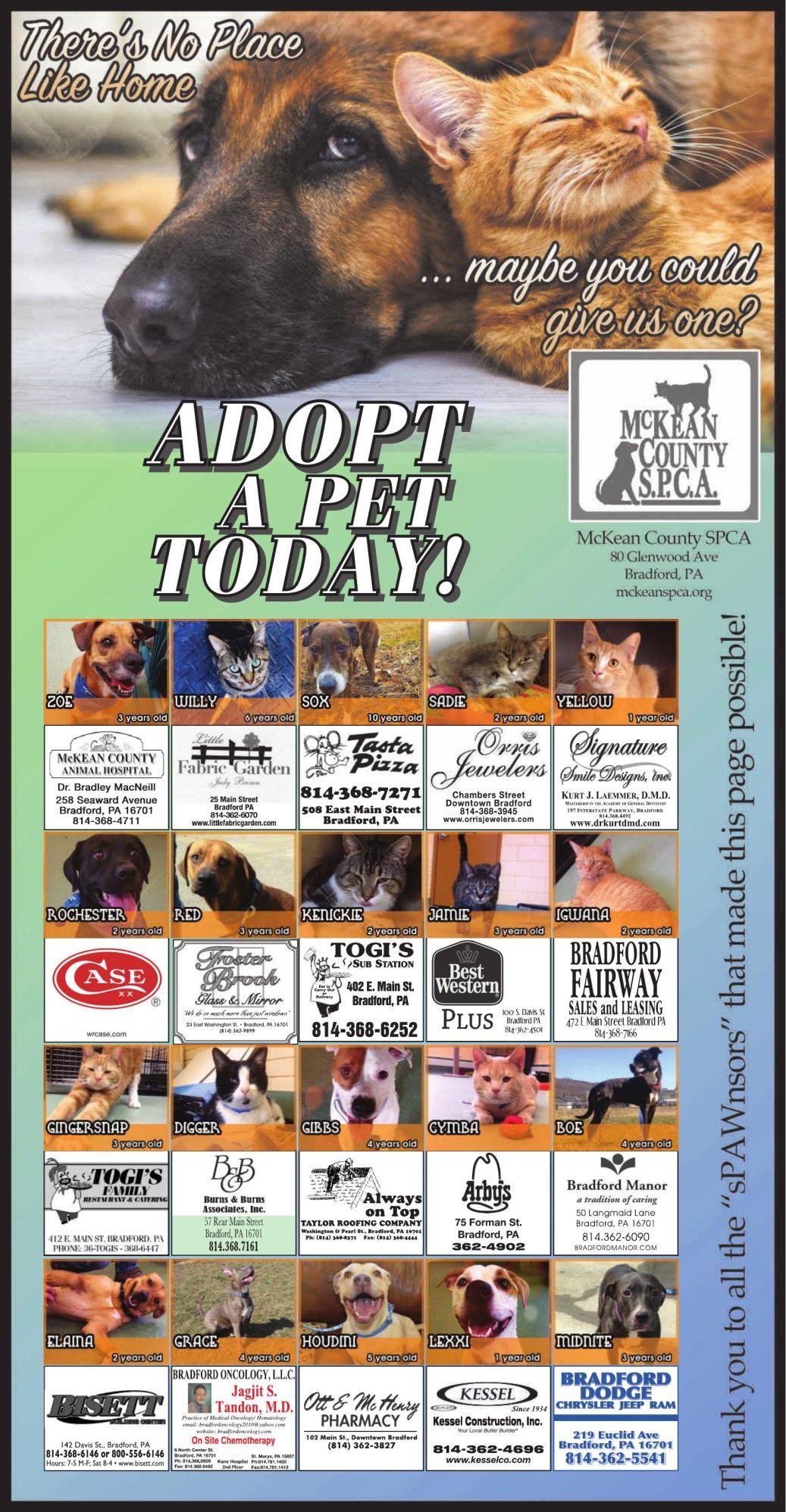 McKean County SPCA Sponsor Page | Ads To Go | bradfordera com