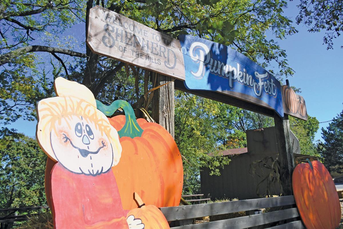 Shepherds Pumpkin Fest 2.jpg
