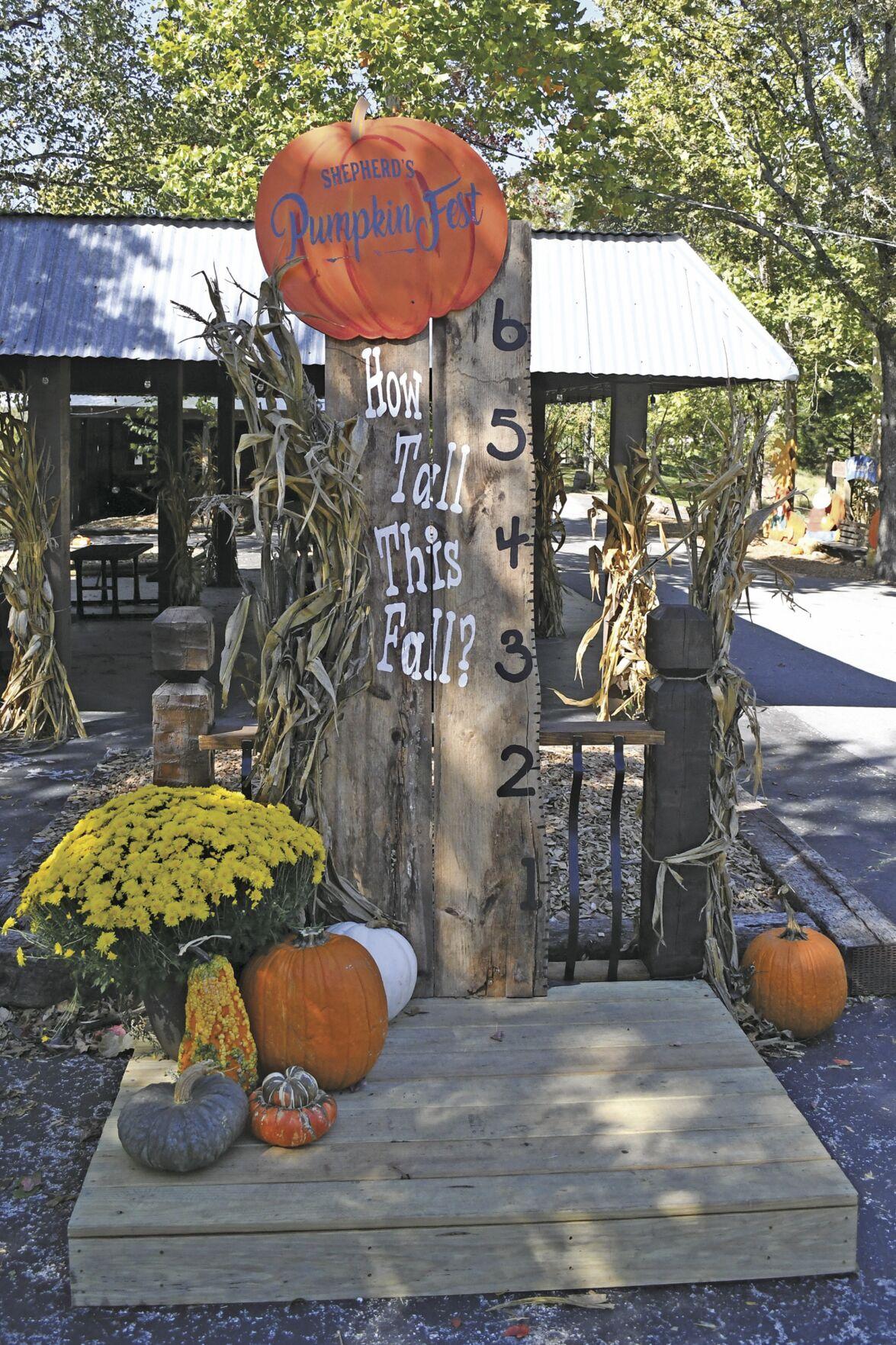 Shepherds Pumpkin Fest 1.jpg